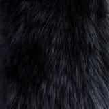 Background of dark fur Stock Images