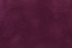 Background of dark purple suede fabric closeup. Velvet matt texture of wine nubuck textile stock photography