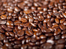 Background of dark roasted coffee beans Stock Photos