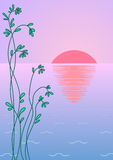 Background: a dawn on the sea. Abstract background: green plant against sea water and the ascending red sun Stock Photography