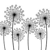 Background with decorative flowers dandelions Stock Images