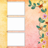 Background with decorative frames with butterfly Royalty Free Stock Image