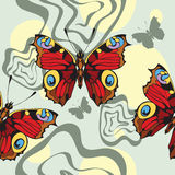 background with decorative nice butterflies Stock Images