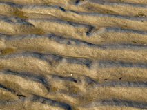 Background of Deep Sand Ripples Royalty Free Stock Images