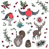 Background Deer, Squirrel, Red Robin Bird, Berries Royalty Free Stock Photo