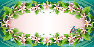 Background with delicate flowers Stock Photos
