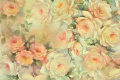 Background of delicate roses. The photograph shows a background of flowers, specifically roses painted in a delicately ethereal Stock Photos