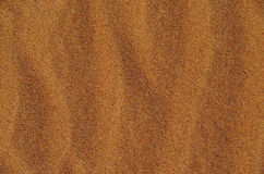 Background of desert sand in a sunny day Stock Photography