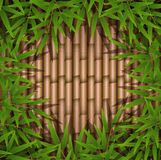 Background design with bamboo plant Stock Photo