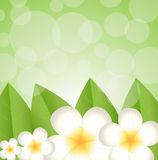Background for a design with beautiful flowers Royalty Free Stock Photos