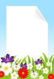 Background for a design with beautiful flowers Royalty Free Stock Image