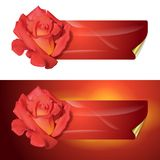 Background for design with a flower Royalty Free Stock Image