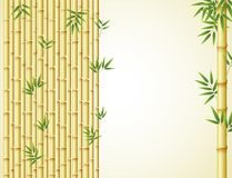 Background design with golden bamboo and green leaves Royalty Free Stock Image