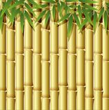 Background design with golden bamboo. Illustration Stock Photo