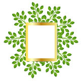 Background for a design with green branches Stock Images