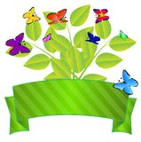 Background for a design with green leaves and butterflies Royalty Free Stock Image