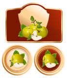 Background for design of packing jam jar. With photo-realistic illustration of green apples Royalty Free Stock Image
