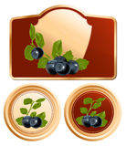 Background for design of packing jam jar with phot. Vector. Background for design of packing jam jar with photo-realistic blueberry Stock Image