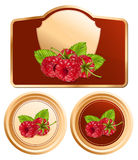 Background for design of packing jam jar with phot. Vector. Background for design of packing jam jar with photo-realistic  raspberry Stock Image