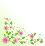 Background for a design with pink flowers Royalty Free Stock Photography