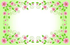 Background for a design with pink flowers Royalty Free Stock Images