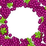 Background design with stylized fresh ripe grapes Stock Photo