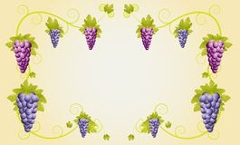 Background for a design with vine Stock Photos