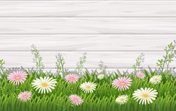 Background design with white and pink flowers Stock Photography
