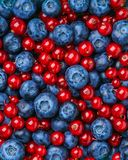 Background of different berries and fruits. Stock Photo