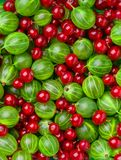 Background of different berries and fruits. Top view royalty free stock image