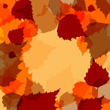 Background of different colors abstract leaves Royalty Free Stock Image