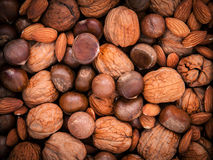 Background from different kinds of nuts in shells ,cashew, almon Stock Image