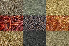 Background of different spices stock photography