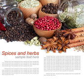 Background of different spices with sample text. On white royalty free stock images