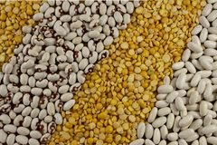 Background of different type of beans royalty free stock photos