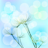 Background with dill and bokeh effect. Vector. 2 Royalty Free Stock Photos