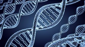 Background, DNA. seamless loop. royalty free illustration