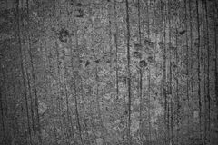 Background, Dog footprint on concrete Stock Image