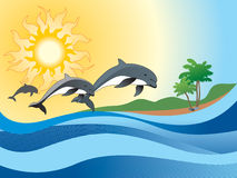 Background with dolphin Royalty Free Stock Photo