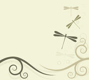 Background with dragonflies Royalty Free Stock Images