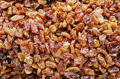 Background of dried dates Royalty Free Stock Photo