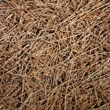 Background - Dried Grass Royalty Free Stock Photo