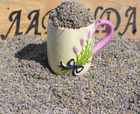 Background of dried lavender Royalty Free Stock Image