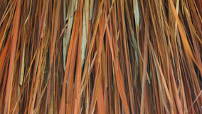 Background of dried leaves Royalty Free Stock Image
