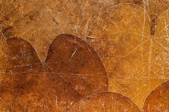 Background from dried old leaves of rusty color Stock Photos