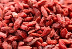 Background of Dried Red Goji Berries Royalty Free Stock Photo