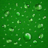 Background with drops on green leaf Royalty Free Stock Photography
