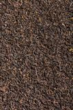 Background dry black tea. Background food, texture of dry black tea Stock Images