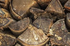 Background of dry chopped firewood logs in a pile. Stock Photos