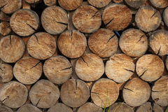 Background of dry chopped firewood logs Royalty Free Stock Photo